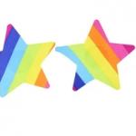 love in leather pastie – rainbow star